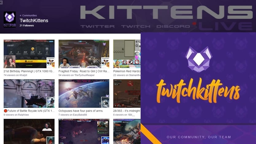 twitch-kittens-streaming-community